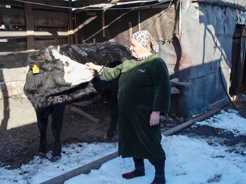 Обзор прессы Кавказа 2 - 8 ноября