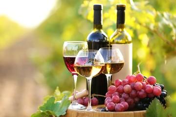 Грузия поставила рекорд по экспорту вина