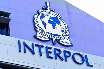 Грузинские криминалисты помогут Интерполу
