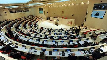 Парламент Грузии займется  уличными разборками