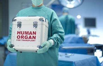 Южная Корея даст импульс развитию трансплантологии в Грузии