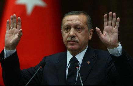 Эрдоган огорчен уничтожением российского Су-24