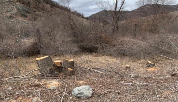 Вот как выглядят душераздирающие следы экологического террора в Кельбаджарском районе (ФОТО/ВИДЕО)