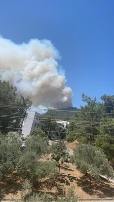 В Турции горят леса возле курортов Мармарис и Ичмелер (ВИДЕО)