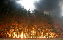 Жителей Кубани предупредили о повышенной пожароопасности