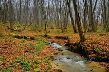 На Ставрополье заработала первая экотропа