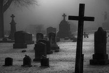 В Апанасенковском районе оцепили кладбище