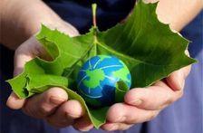 Азербайджан стал самой экологически эффективной страной Кавказа