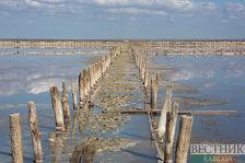 Соляное озеро Крыма