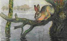 Спецоперация в Дагестане: спасены зайцы