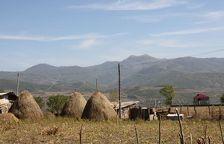 У североосетинского арендатора конфисковали 300 га земли