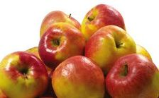 Россельхознадзор запретил транзит в Казахстан и Киргизию более 94 тонн фруктов