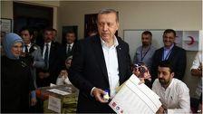 Турция проголосовала за обновление власти